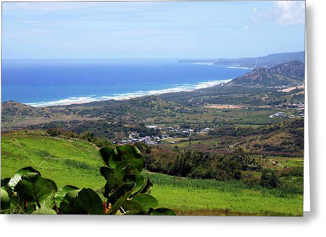 Greeting Card featuring the photograph View From Cherry Hill, Barbados by Kurt Van Wagner