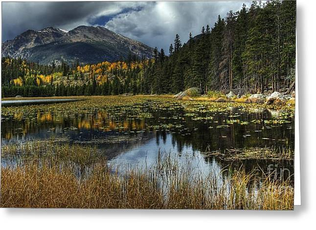 View From Cub Lake Greeting Card by Pete Hellmann