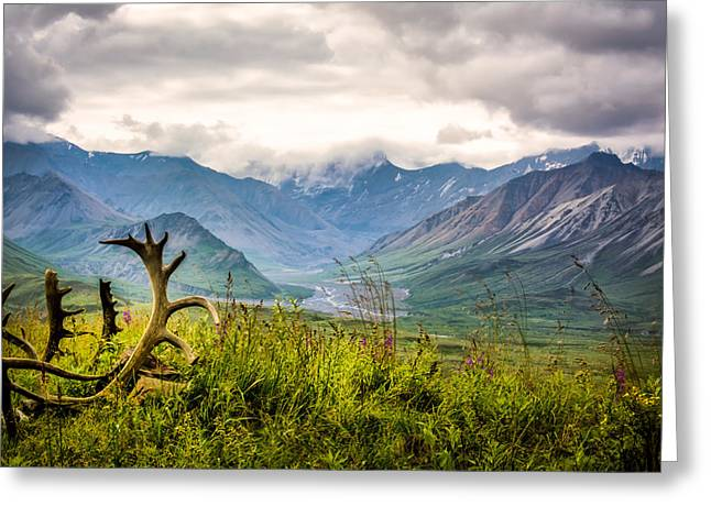View From Eielson Greeting Card