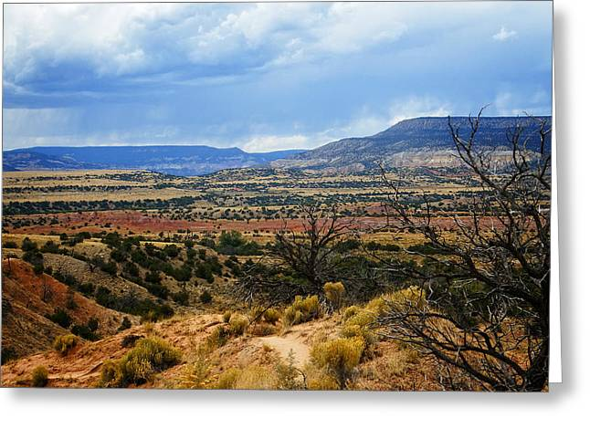 View From Ghost Ranch, Nm Greeting Card by Kurt Van Wagner