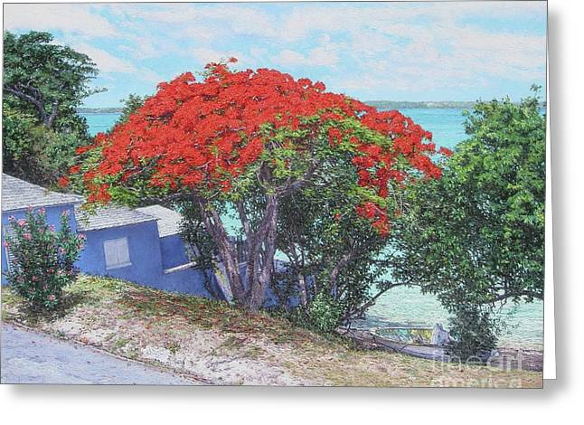 View From Hill Street Greeting Card