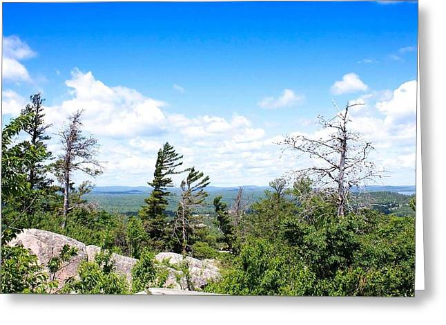 View From Mount Marquette Greeting Card by Kendall Tabor