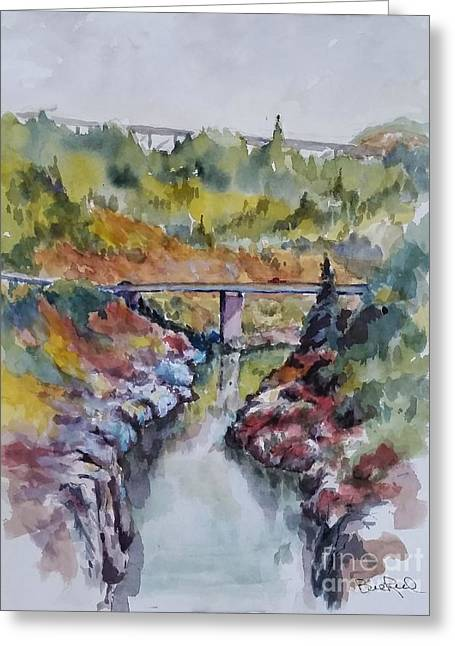 View From No Hands Bridge Greeting Card by William Reed