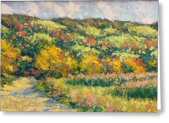 View From Pine Plains Greeting Card by Gene Cadore