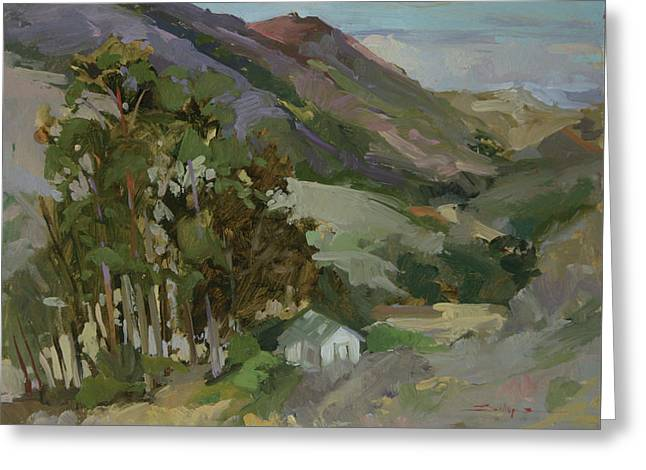 View From The Reservoir - Catalina Island Greeting Card