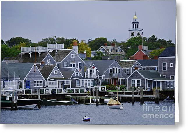 View From The Water Greeting Card by Lori Tambakis