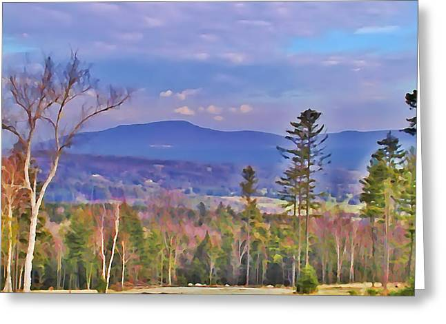 View From Von Trapps Lodge 1 Greeting Card by Bill Cannon