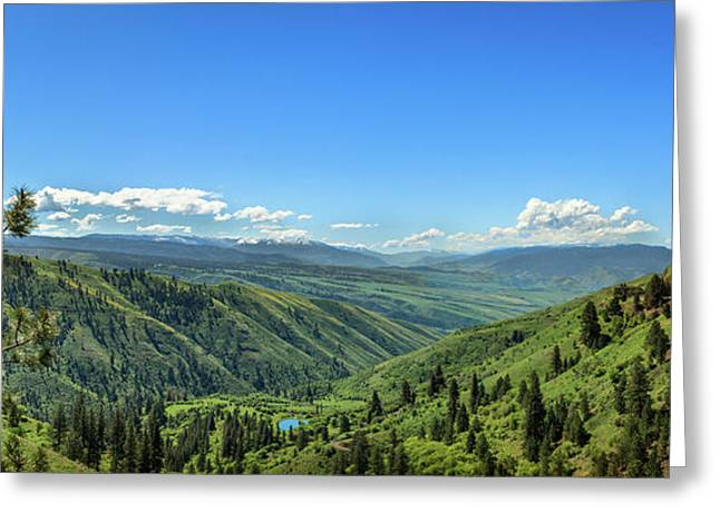 View From White Bird Hill Greeting Card by Robert Bales