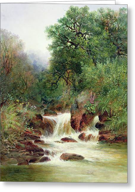 View In Gidley Park, Devon Greeting Card by William Widgery