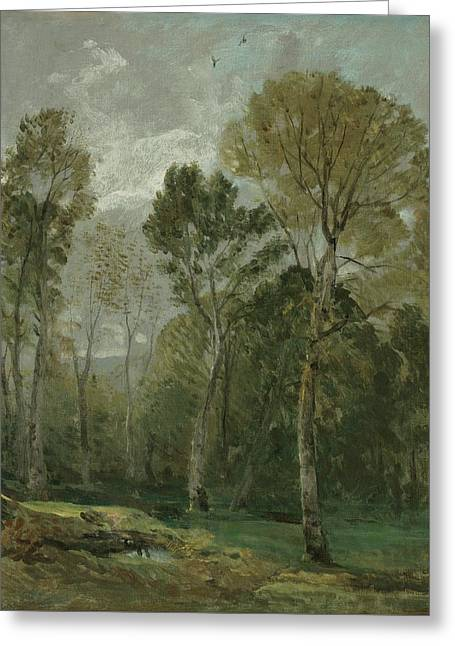 View Of A Copse Greeting Card by John Constable