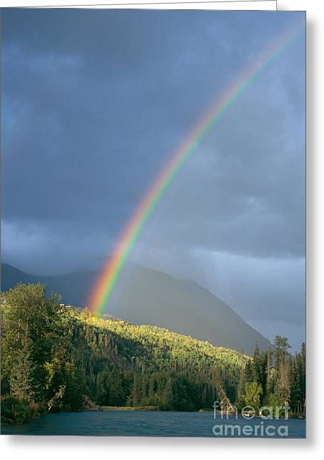 View Of Alaska Greeting Card by Gloria & Richard Maschmeyer - Printscapes