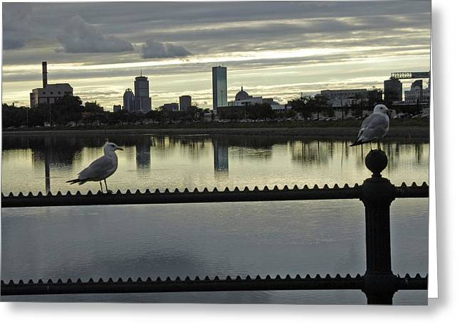 View Of City Of Boston From Castle Island Greeting Card