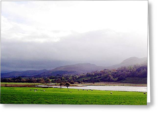 View Of Glencar Greeting Card by Amy Williams