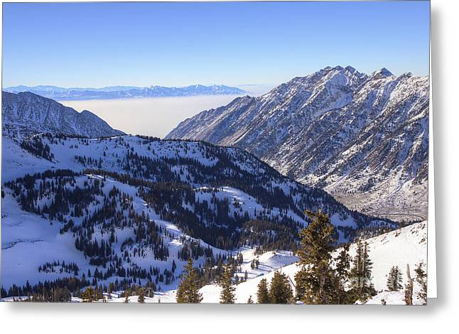 View Of Little Cottonwood Canyon From Hidden Peak Greeting Card by Spencer Baugh