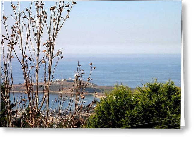 View Of Pillar Point Greeting Card