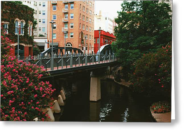 View Of San Antonio River Walk, San Antonio, Texas, Usa Greeting Card