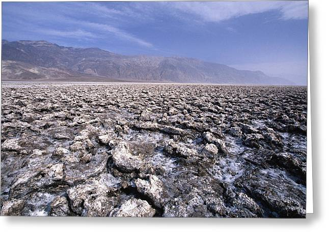 Arid Life Photographs Greeting Cards - View of the Devils Golf Course Death Valley California Greeting Card by George Oze