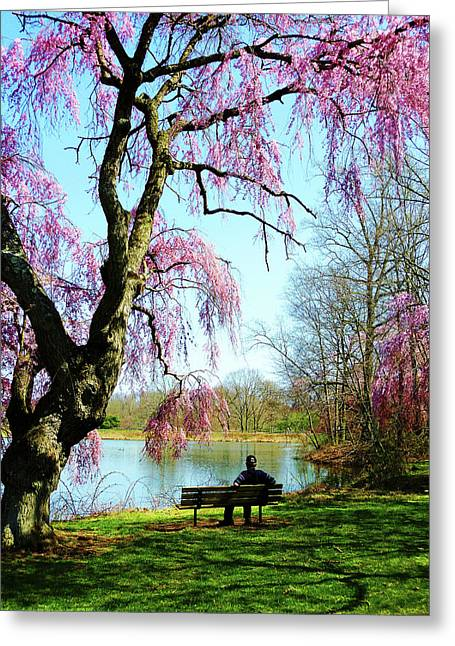 View Of The Lake In Spring Greeting Card by Susan Savad