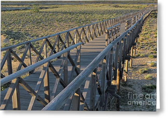View Of The Wooden Bridge In Quinta Do Lago Greeting Card by Angelo DeVal