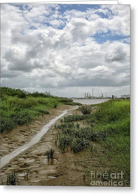 View On Suriname River Greeting Card