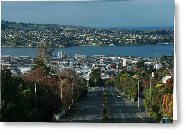 View Stuart St To Waverly Dunedin Nz Greeting Card by Terry Perham