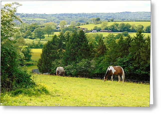 View To Kill For Greeting Card by Linda Corby