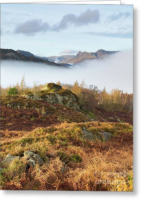 View Towards The Langdales From Holme Fell Greeting Card by Tony Higginson