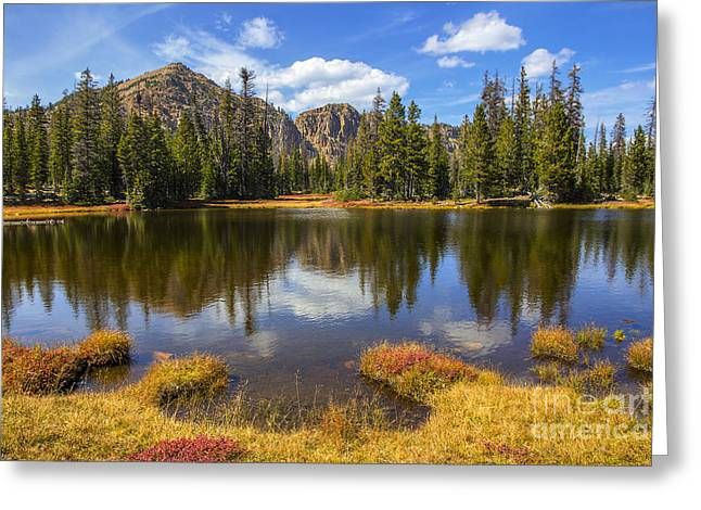 View Towards Notch Mountain Greeting Card by Spencer Baugh