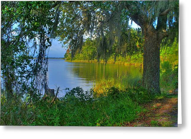 View Under The Spanish Moss Greeting Card