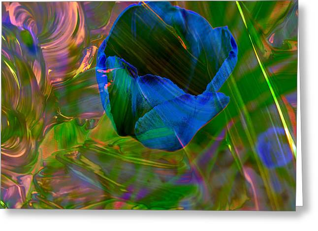 Viewing A Tulip Greeting Card by Jeff Swan