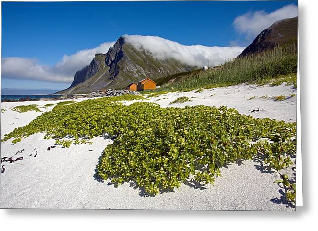 Vikten Beach With Green Grass, Mountains And Clouds Greeting Card