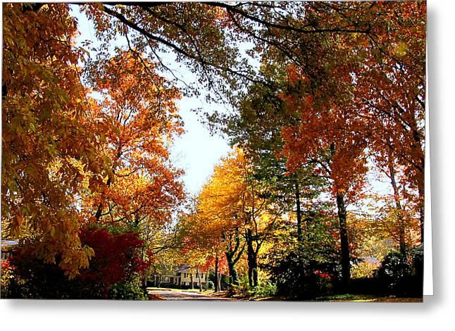 Village Street In Autumn Greeting Card by Susan Savad