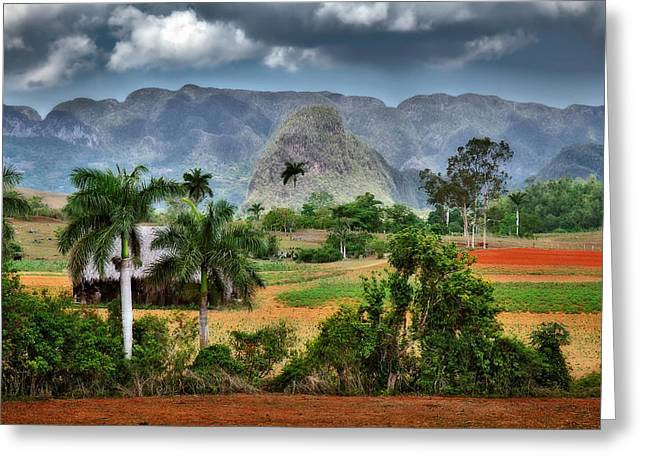 Historic Site Greeting Cards - Vinales. Pinar del Rio. Cuba Greeting Card by Juan Carlos Ferro Duque