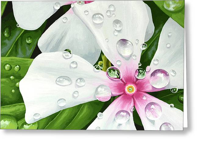 Vinca Greeting Card