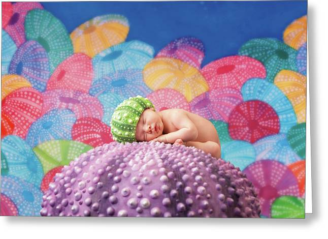 Vince As A Sea Urchin Greeting Card by Anne Geddes