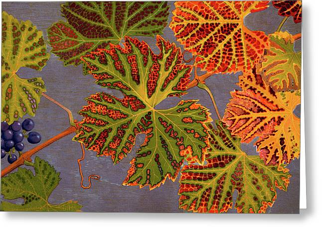 Vine Leaves And Ripened Grapes Greeting Card by Philippe Robert