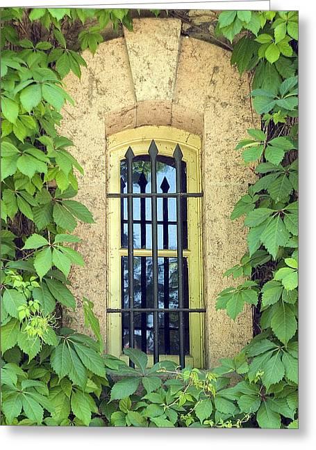 Vined Window I Greeting Card by Mark Harrington