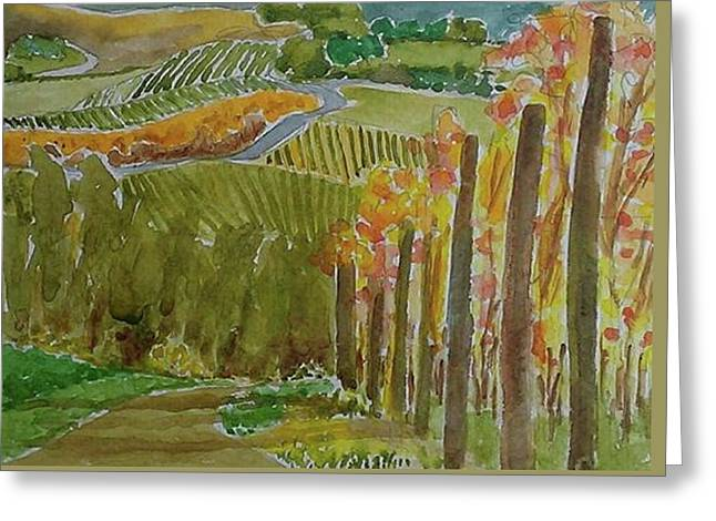Vineyard And Cultivated Fields Greeting Card by Janet Butler