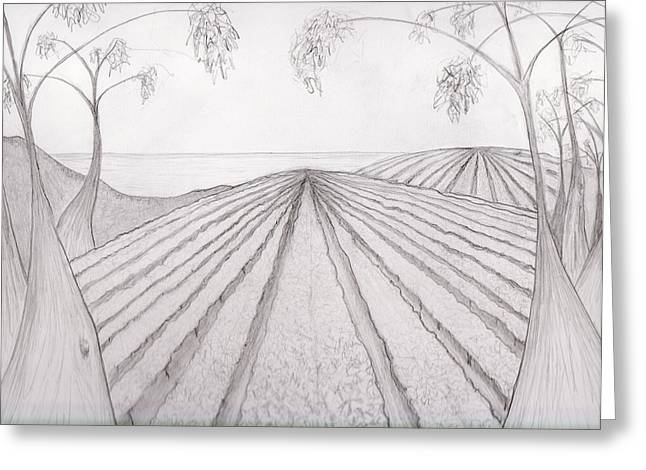 Vineyard And Karri By The Ocean Greeting Card by Leonie Higgins Noone