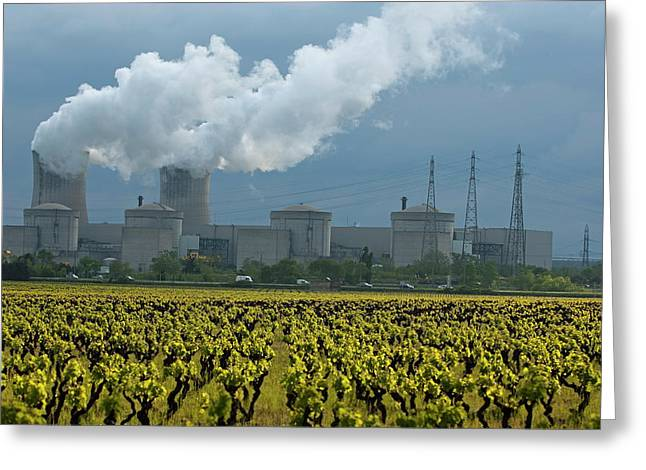 Power Plants Greeting Cards - Vineyard at spring outside of the Tricastin Nuclear Power Plant Greeting Card by Sami Sarkis