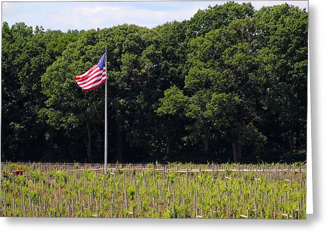 Vineyard Flag Greeting Card by Brian Manfra