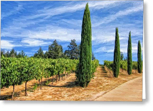 Vineyard In Tuscany Greeting Card by Dominic Piperata