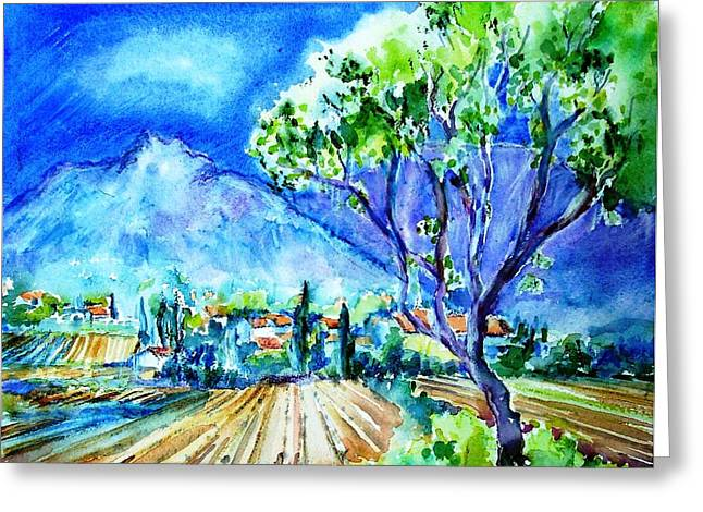Vineyard Near Opoul In France  Greeting Card by Trudi Doyle