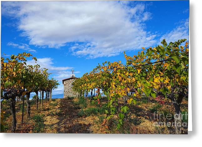 Vineyard Temple Greeting Card by Mike Dawson