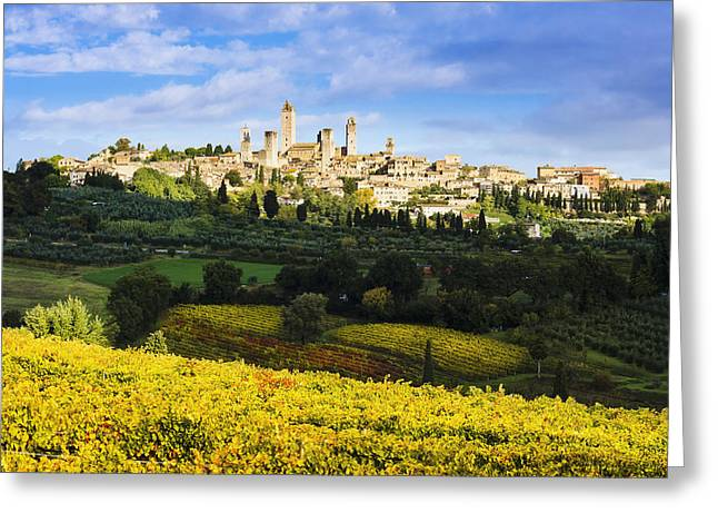 Vineyards And San Gimignano  Tuscany Greeting Card by Yves Marcoux