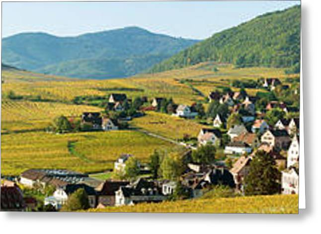Vineyards In Autumn In The Morning Greeting Card by Panoramic Images