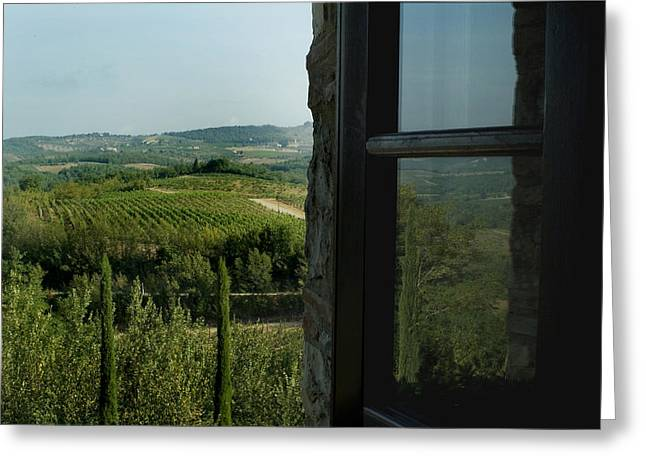 Vineyards Of Chianti Viewed Greeting Card by Todd Gipstein