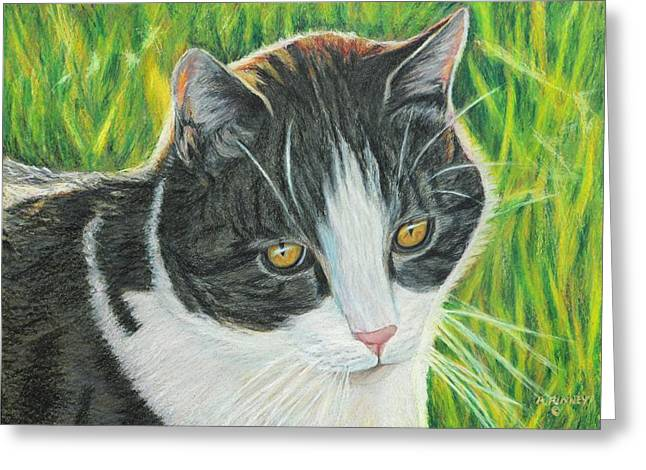 Vinny In Late Afternoon Greeting Card by Angela Finney