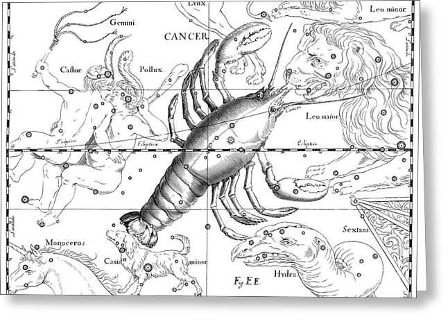 Vintage Astrological Map Showing The Signs Of The Zodiac Greeting Card
