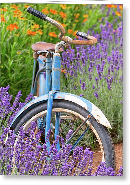 Greeting Card featuring the photograph Vintage Bike In Lavender by Patricia Davidson